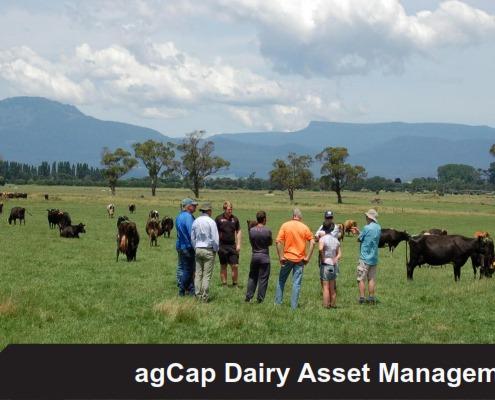 agCap Dairy Asset Management